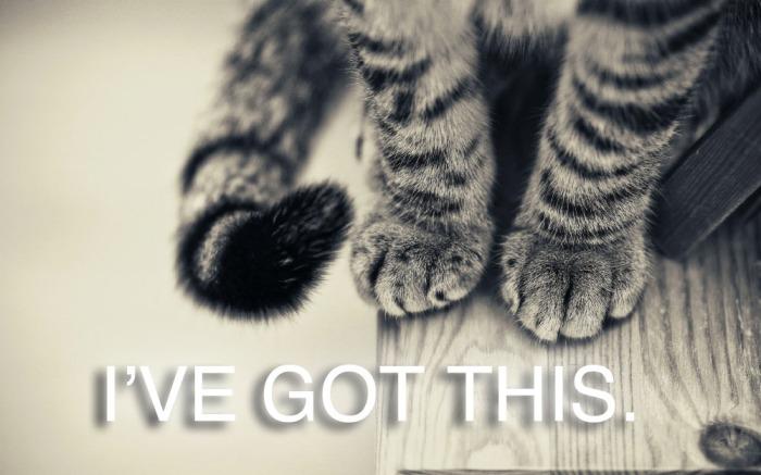 Animals_Cats_Cat_paws_022255_ copy